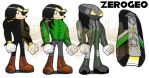 Sonic Riders: Unlimited - Acer the Echinda by ZER0GEO