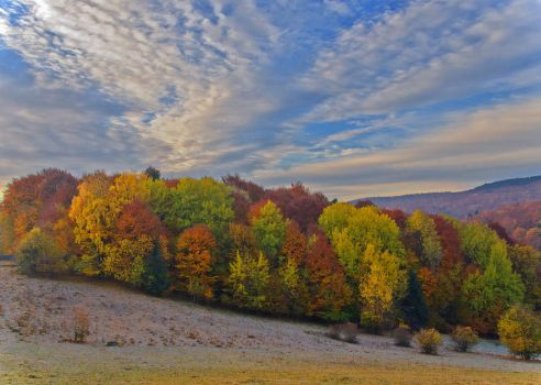 Nature autumn by lica20