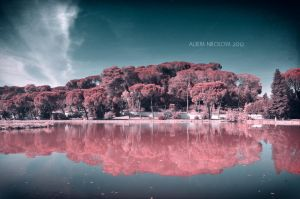 Pinkland by Alharaca