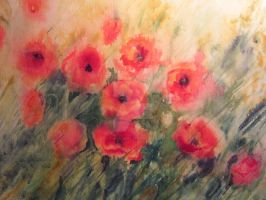 Mohn by uschibeckert