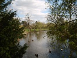 Lake in Markeaton Park, Derby by Isavarg