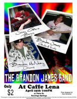 Brandon James Flyer by morestarinatthestars