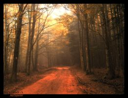 DREAM PATH by epsdesign