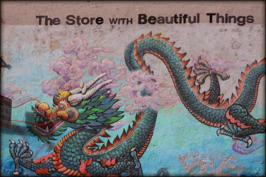 The Store With Beautiful Things by viewsionone