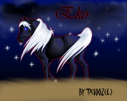 Eko, le poney cool attitude by Xx-tatooz-xX