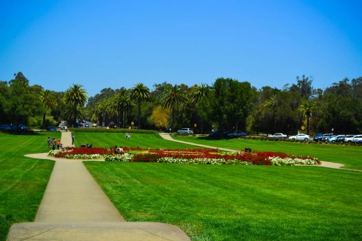 Stanford University - Oval by xdgrace