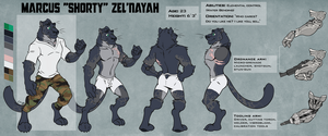 Marcus Zel'Nayah Reference Sheet - for Kyyanno by KingdomBlade
