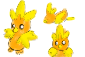 Torchic airbrush sketches by TheBlazingK