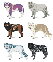 Wolf Adoptables 3 OPEN by galianogangster