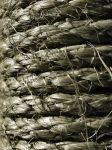 Rope Texture 02 by Aimi-Stock