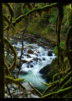 wallace river ii by NWunseen