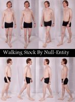 Walking Stock by Null-Entity