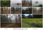 Exclusive Landscape Pack II by lindowyn-stock