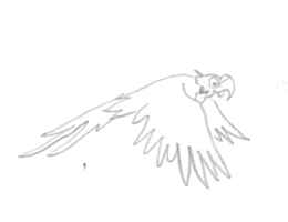 Fred THe Parrot Flight Test 2(rough) by FireNationPhoenix