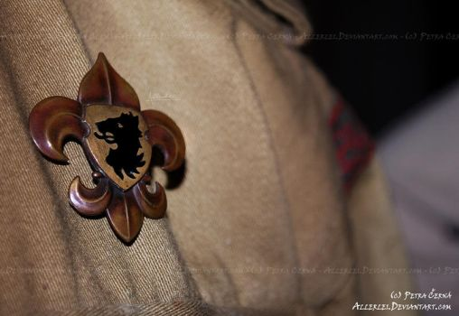 Scout's lily badge by ScoutAllerlei