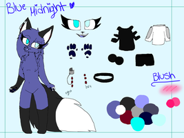 Blue Midnight Ref by Azurlz