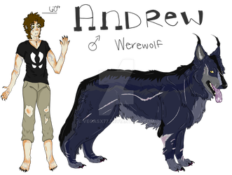 Andrew Reference Sheet by VegasX77