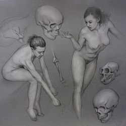 Nudes and Skulls by mattdonnici