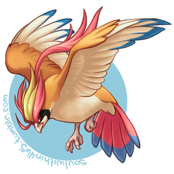 Mega Pidgeot by soulwithin465
