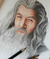 Gandalf, the gray by JessicaHirano