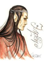 Elrond by Laterne-Magica