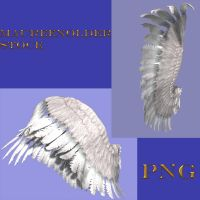 STOCK PNG wings set 2 by MaureenOlder