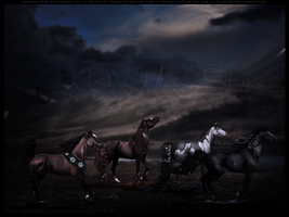 Chasing the Seasons by BlueHorseStudios