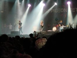 The Pigeon Detectives LL08 by Navapr