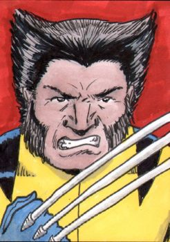 Wolverine Sketch Card - ECCC by pjperez