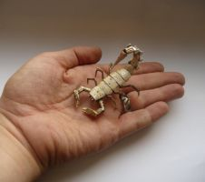 Mechanical Scorpion (hand for scale) by AMechanicalMind