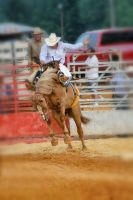 Rodeo by Shadowhawk9973