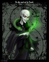 HP: Voldemort by Bilious