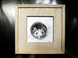 Tiny Mouse Pencil drawing by Lineke-Lijn