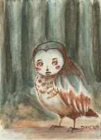 In Monk Woods, the birds by emera