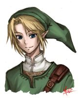 Link Practice Sketch by MOLD123