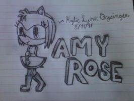 Amy rose the hedgehog by KylietheStar