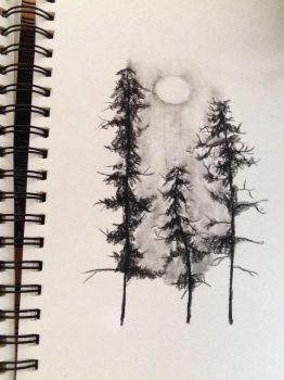 Charcoal Trees by Bannakoot