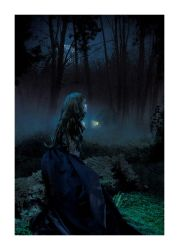The Witch of Blackbird Pond by N3gated