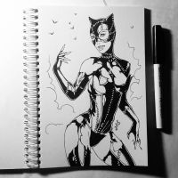 Instaart - Catwoman (NSFW on Patreon) by Candra
