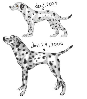 dalmatian: then and now by xquenyax