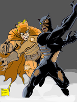 BLACK PANTHER vs CAT MAN by gagex07