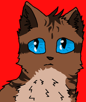 Hawkfrost by Lightningheart1