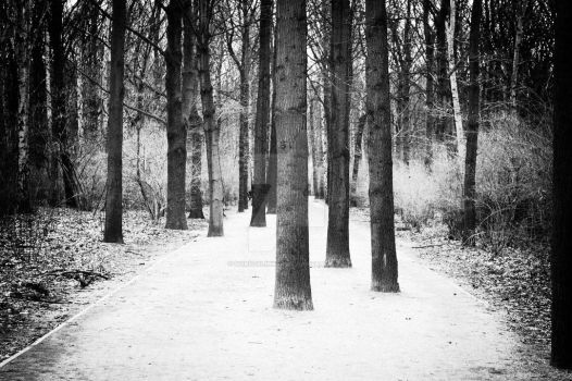 woodway by horstklinker