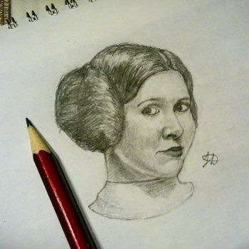 Princess Leia Organa by Delkin