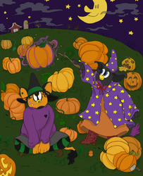 pumpkin patch by robotboxers