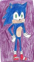 Sonic stands proud by dth1971