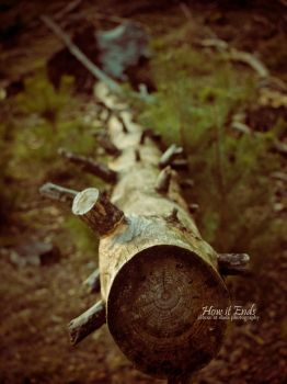 How it Ends by SlaDa-Photography