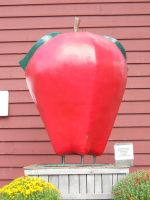 Giant Apple by Busted-Love