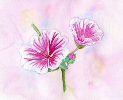 Flower by Annica22