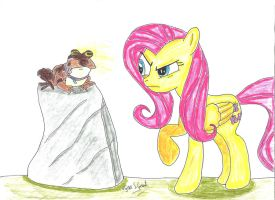 Fluttershy Vs. The Hypnotoad by UlyssesGrant